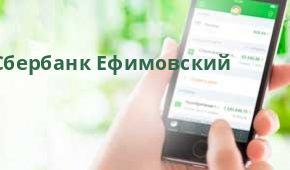 Сбербанк Опер.офис №9055/01071, Ефимовский